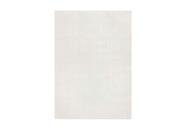 10 Notizblocks ohne Deckblatt 100 Blatt A4, kariert